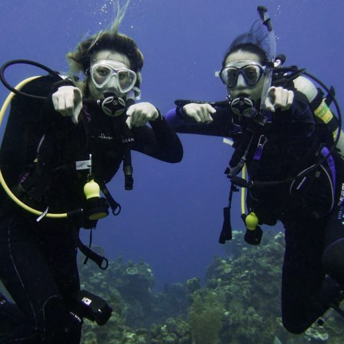 Scuba Trips with Friends